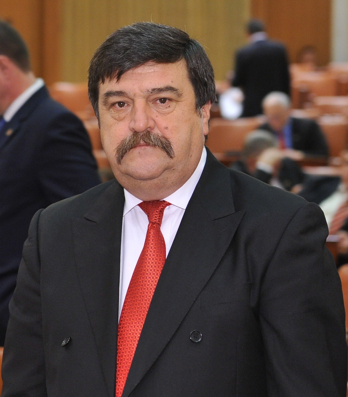 Colegiul Senatorial al lui Toni Greblă scos la alegerile din 25 mai2014