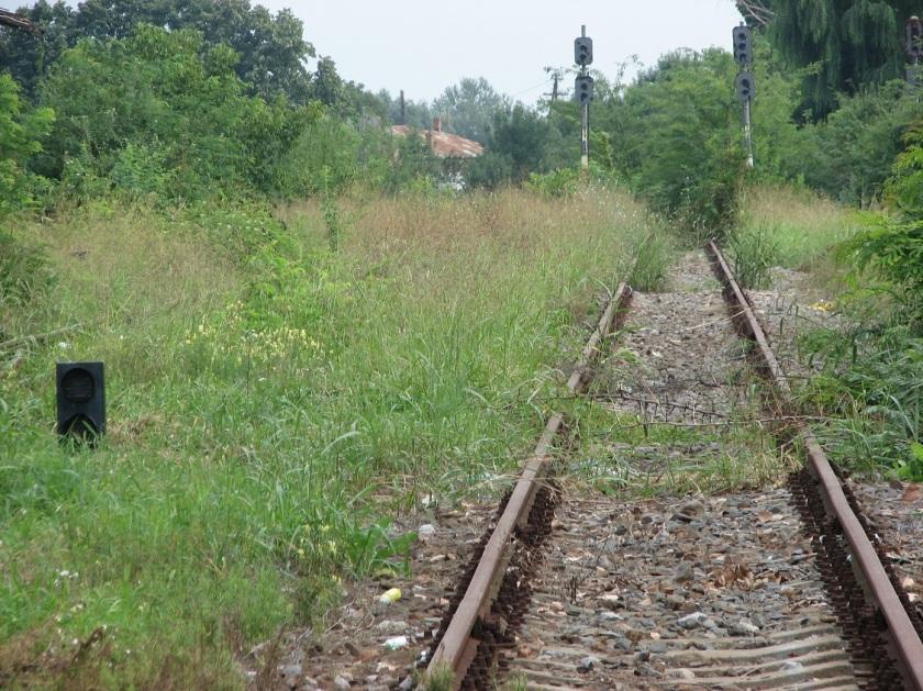cale-ferata-bucurieni